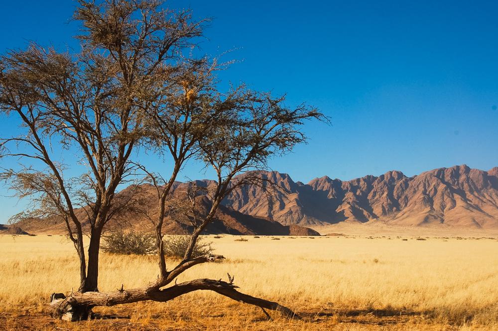 namibia1363