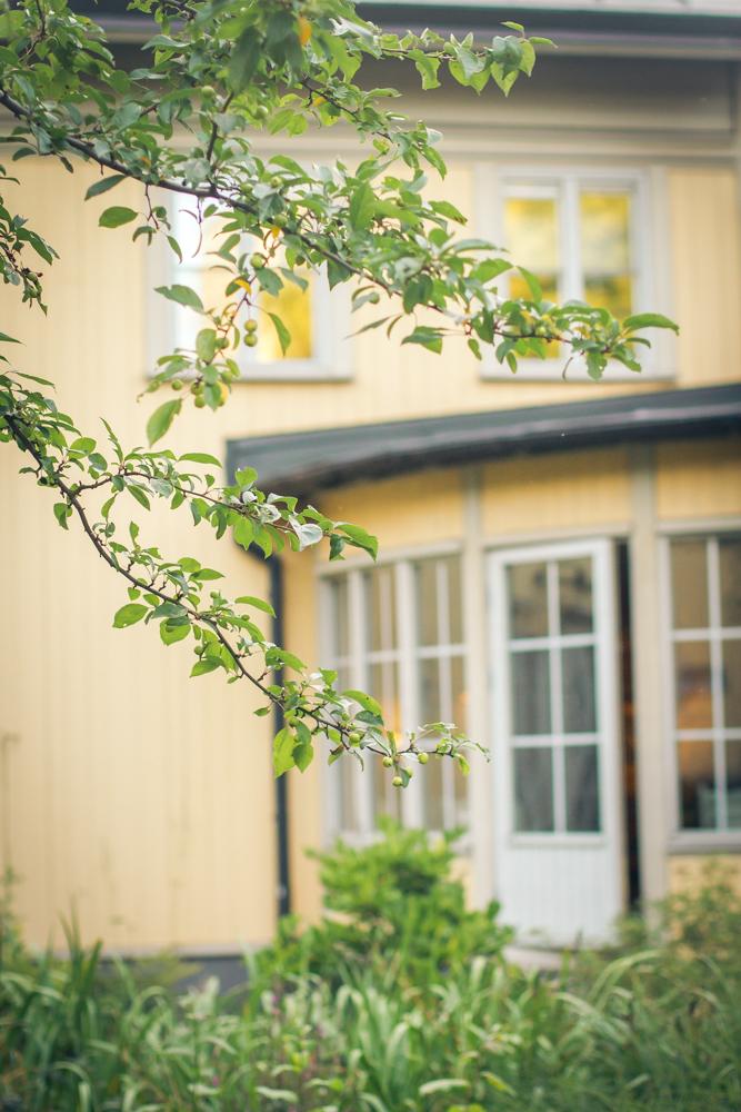 ec-destination-wedding-stockholm-stallmastargarden-turkish-wedding-sweden-75