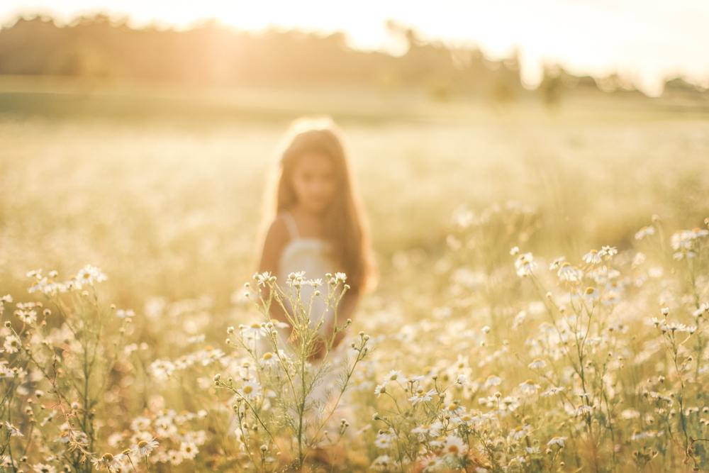 familjefoto-barnfoto-syskonfoto-familyshoot-summer-vasteras-izlaphotography-19