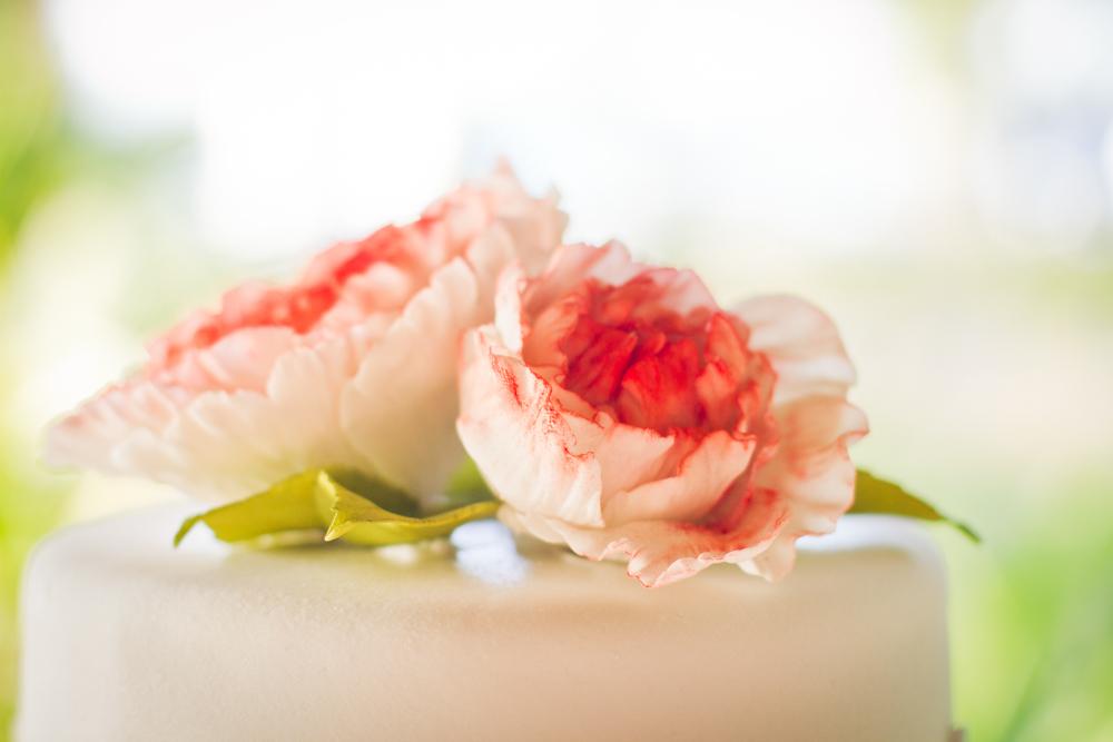 ce-costa-rica-destination-wedding-izlaphotography-23