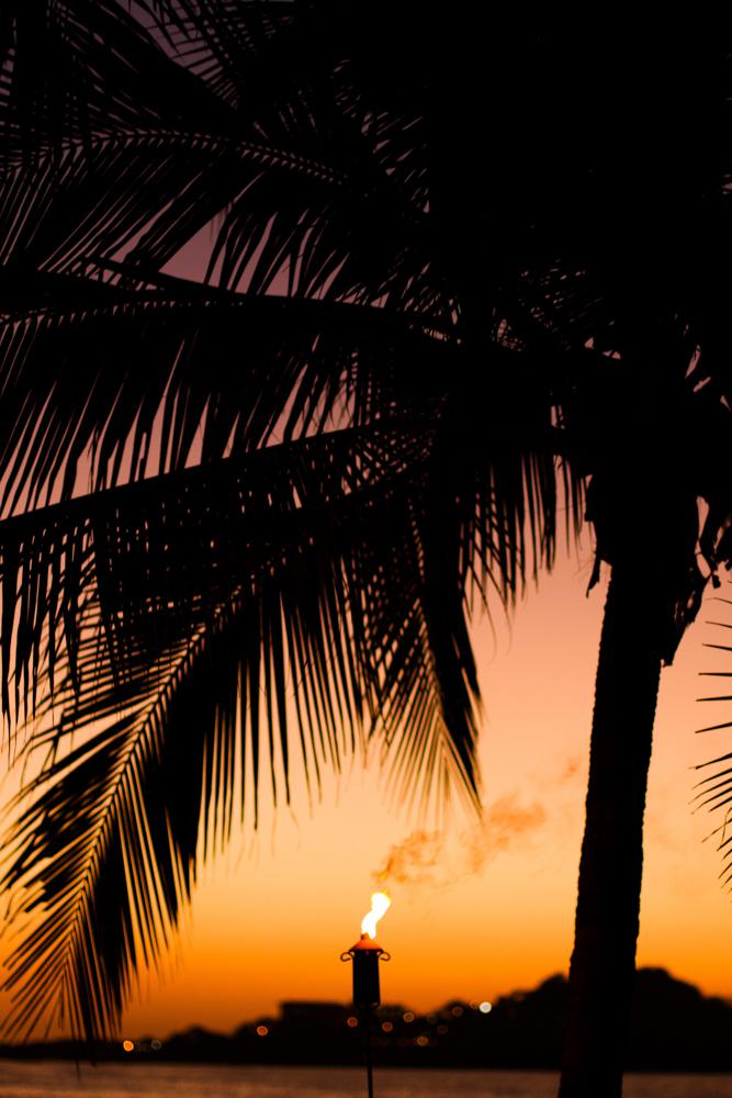 ce-costa-rica-destination-wedding-izlaphotography-66